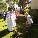 2019 Blessing of the Animals photo album thumbnail 5