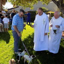 2019 Blessing of the Animals photo album thumbnail 6