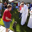 2019 Blessing of the Animals photo album thumbnail 8